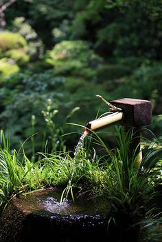 Japanese water fountain, this is a nice water feature to a garden Kyoto Japan, Landscape Design, Garden Design, Japanese Water, Water Features In The Garden, Shade Garden, Garden Styles, Dream Garden, Belle Photo