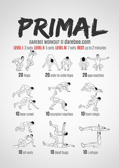 Primal workout exercise darbee workout, workout и gym workou Fitness Workouts, Darbee Workout, Calisthenics Workout, Boxing Workout, Easy Workouts, At Home Workouts, Martial Arts Workout, Boxe Mma, Primal Movement