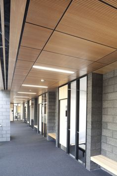 Architects Architectus used a number of Décortech panels to combine the warmth and elegance of real timber with all acoustic and fire requirements for St Ceiling Light Design, Lighting Design, Ceiling Lights, St Cuthbert, Office Spaces, Ceilings, Interior Inspiration, Knowledge, Interiors