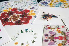 Pikolab & Lokokon 5 postcards set