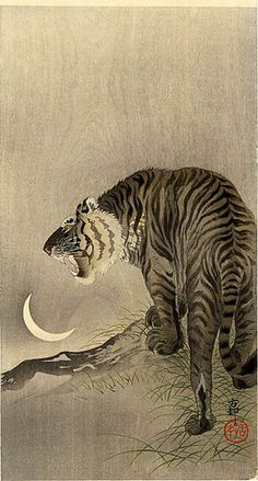 'Tiger Near Rocks' ( Meiji era, circa 1910 ). Woodblock print by Ohara Koson 小原古邨 - Published by Daikokuya. Image and text information courtesy Freer Sackler. Copyright with museum. Japanese Painting, Chinese Painting, Chinese Art, Art Tigre, Ohara Koson, Art Asiatique, Tiger Art, Art Japonais, Art Graphique