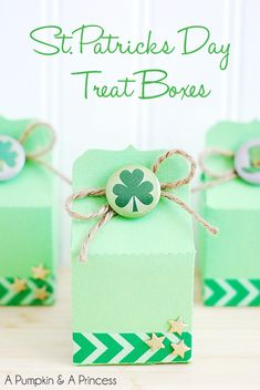 St. Patrick's Day treat boxes - loved how she closed them with a twine and clover pin