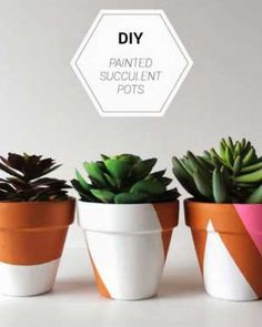 DIY your photo charms, compatible with Pandora bracelets. Make your gifts special. Make your life special! DIY painted succulent pots ~ so cute for your patio garden or a nice centrepiece for your table ~ best with succulent plants Painted Plant Pots, Terracotta Plant Pots, Painted Flower Pots, Decorated Flower Pots, Painted Pebbles, Succulent Pots, Planting Succulents, Potted Plants, Flower Pot Design