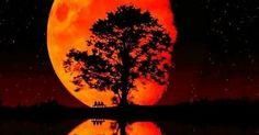 ENJOY THE NATURE   _____________ [#m_eye_nd]  [#wizdomly]  [#FreeYourMeyeND] [#quotes]  [#inspiration]  [#HigherAwakening]  [#PLUR]  [#india]  [#instagood]  [#instadaily]  [#freeyourmind]  [#1ove]  [#bloodmoon2015]