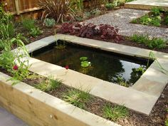 Shady Low Maintenance Garden on Two Levels Low Water Landscaping, Ponds For Small Gardens, Contemporary Garden Design, Water Nymphs, Small Pools, Low Maintenance Garden, Garden Pond, Water Features, Home And Garden