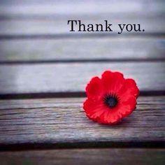 Thank you poppy