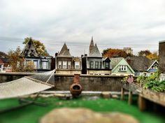 Rooftop garden in Shadyside Pittsburgh