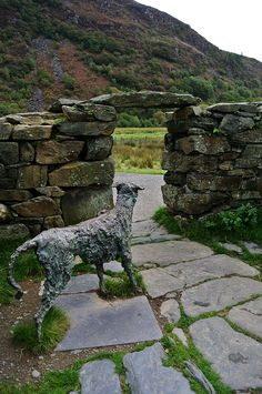 Escape for a day in Beddgelert, North Wales