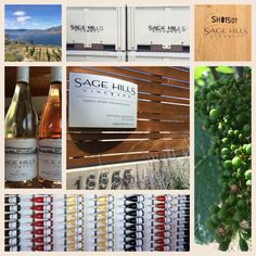 "Perched above Okanagan Lake, Sage Hills is making premium organic BC wine.  Visit their chic tasting room & make sure to try their ""Orange"" wine!"