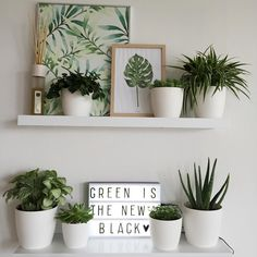alphabet lifestyleGet The Look : Green with envy Alphabet Lifestyle Interior Design grüne Raumdekoration Ideen – sehen Sie mehr