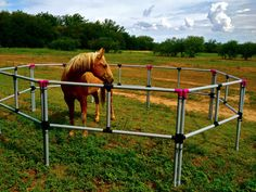 Need to make this for taking the horses up to the camp! Portable Horse Corral Corrals Panels Pens USA Made Box Set Safe Secure   eBay