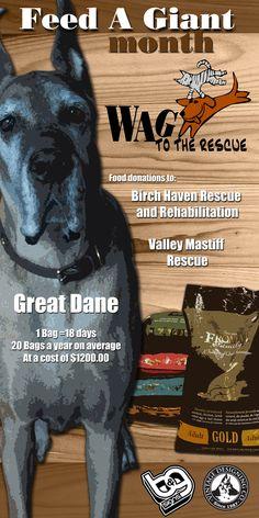 Mastiff Rescue, Month Of July, Vintage Designs, Cool Designs, Graphics, Graphic Design, Printmaking