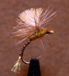 Fly Tying Veniard Hen Pheasant Wings pair H9