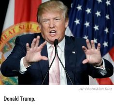 SOLENZO BLOG: Donald Trump fires off epic statement, tweetstorm after being accused of mocking reporter's physical disability
