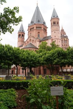 """Urban Gardening at the """"Liebfrauenplatz"""" in front of the Cathedral Dom St. Ripe vegetables and herbs may be picked by people passing by. Mainz Germany, Public Garden, Urban Gardening, Kirchen, Outdoor Activities, Cities, Herbs, Memories, Mansions"""