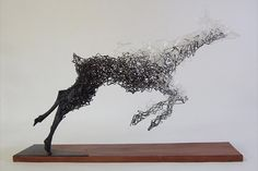 Sculptor Tomohiro Inaba Creates Surreal Animal Representations Using Wires