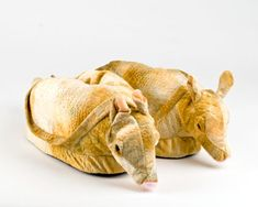 Armadillo Animal Slippers. WIN!