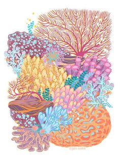 Image result for coral reef art lesson plan