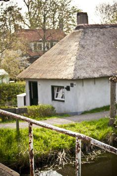 Wilgenrijk: Foto