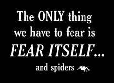 The only thing we have to fear is fear itself...and spiders