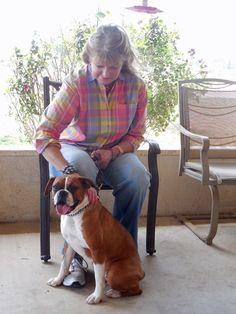 USING DOG WISH PSYCHIATRIC SERVICE DOGS AS CARE PARTNERS, By Bob Taylor - Founder and President of Dog Wish, Inc.