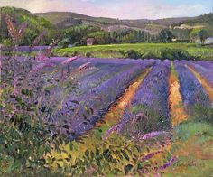 Timothy Easton Buddleia And Lavender Field Montclus print for sale. Shop for Timothy Easton Buddleia And Lavender Field Montclus painting and frame at discount price, ships in 24 hours. Framed Art Prints, Painting Prints, Poster Prints, Canvas Prints, Painting Art, Landscape Art, Landscape Paintings, Oil Paintings, Watercolor Paintings