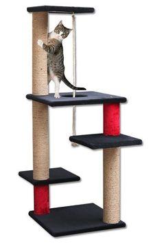 Tırmalamalar - Mama & Mama | Kedi ve Köpek Mamaları Cat House Diy, British Shorthair, Cat Tree, Animal Shelter, Wood Projects, Cats, Cat Stuff, Animals, Babies