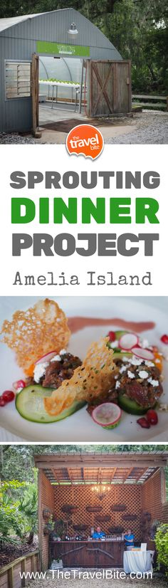 The Sprouting Project - Omni Amelia Island - The Travel Bite Usa Travel, Luxury Travel, Travel Tips, Amelia Island Plantation, Amelia Island Florida, Good Bakery, Florida Resorts, Food Tasting, Worlds Of Fun