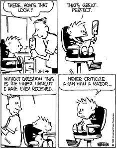 a chap with a razor Calvin And Hobbes Quotes, Calvin And Hobbes Comics, Snoopy Comics, A Comics, Funny Comics, Haha Funny, Funny Memes, Hilarious, Calvin And Hobbes Wallpaper
