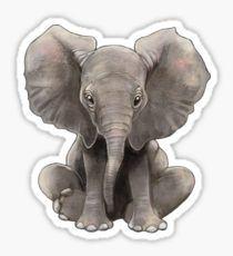 Elephant Baby  Pegatina