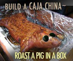 3749edb0136 Build a Caja China ~ Roast a Pig in a Box