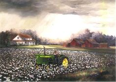 cotton fields in art