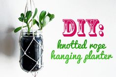 Instead of lugging your recyclables outside for collection this week, why not rummage through to gather materials for this unique hanging planter project? For this fun DIY decoration, you'll use string to knot a custom plant holder for a recycled container.