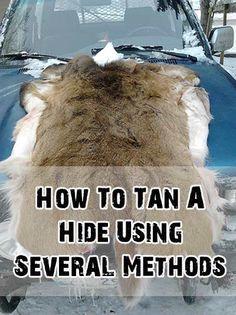 How To Tan A Hide Using Several Methods http://www.shtfpreparedness.com/tan-hide-using-several-methods/?utm_content=buffer023c9&utm_medium=social&utm_source=pinterest.com&utm_campaign=buffer#.UmyFn_nUl2A