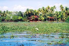 10 Eco-Friendly Hotels in India: Coconut Lagoon, Kerala Backwaters