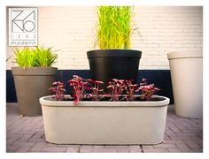 Concrete flower pot Malva has been designed to complement green surroundings and modern city centres. It comes in a variety of colours and sizes...