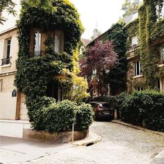 A walk through the greenary in southern paris
