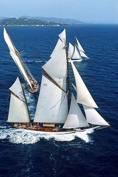 3 Ships in same frame. Classic Sailing, Classic Yachts, Yacht Week, Sailboat Living, Boat Insurance, Naval, Paddle Boat, Remo, Sailing Ships