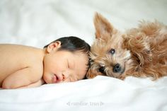 Babies and dogs // portrait of baby and dog in the tub // photography with the family pet