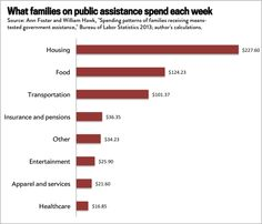 38 Government Social Welfare Ideas Welfare Government Politics