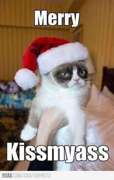 A little Grumpy Cat humor on this fine Christmas Day!
