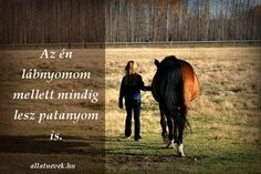 Equestrian Quotes, Horse Quotes, Bff, Spirituality, Horses, Animals, Animales, Animaux, Equine Quotes