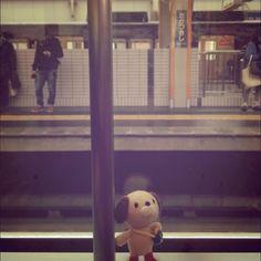 高槻市駅で電車をまつたろちゃん