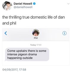 Dan and Phil Twitter Updates