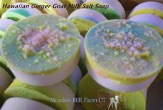 Hawaiian Ginger Salt Bar.  $4.50 Handmade by Meadow Hill Farm CT.   We use only Fresh Goat Milk from our own herd.   Feel the difference the milk makes!