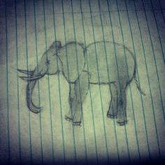 Elephant drawing my drawing