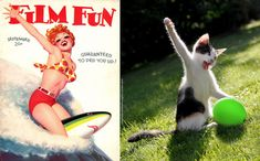 "Ever Wonder Where Pin-Up Artists Got Their Inspiration? | TheAnimalRecueSite.com | ""It's no secret that cats make great models. They are infinitely photogenic & the ability to share so many amazing moments online has only solidified their place as the models of the animal kingdom. Where did cats learn how to be so elegant & salacious? That's the real question & Australian artist Rachel Aslett may have found the answer."" Click to enjoy and share the full article with cute pics. 9/12"