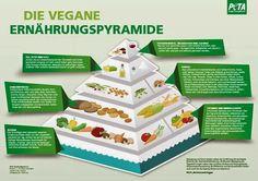 Vegane Küche - vegan kochen ist nicht schwer: Die goldenen Regeln der veganen Ernährung