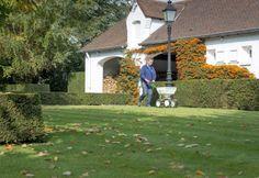 Herbstarbeiten am Rasen...