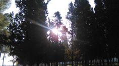 Dia 25 - Rayo de sol
